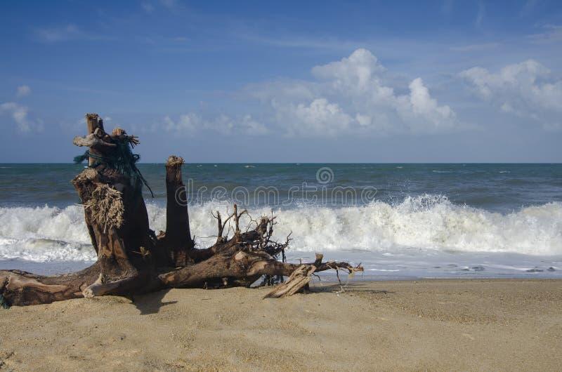 Imagem do foco borrado e seletivo o tempo ventoso e o mar forte acenam batendo a linha costeira fotos de stock royalty free