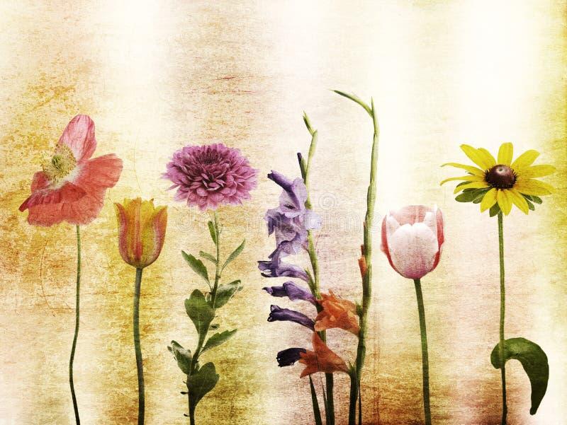 Download Fundo das flores imagem de stock. Imagem de rustic, mola - 29837129