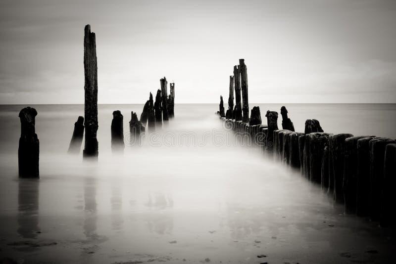 Imagem do mar de B&w