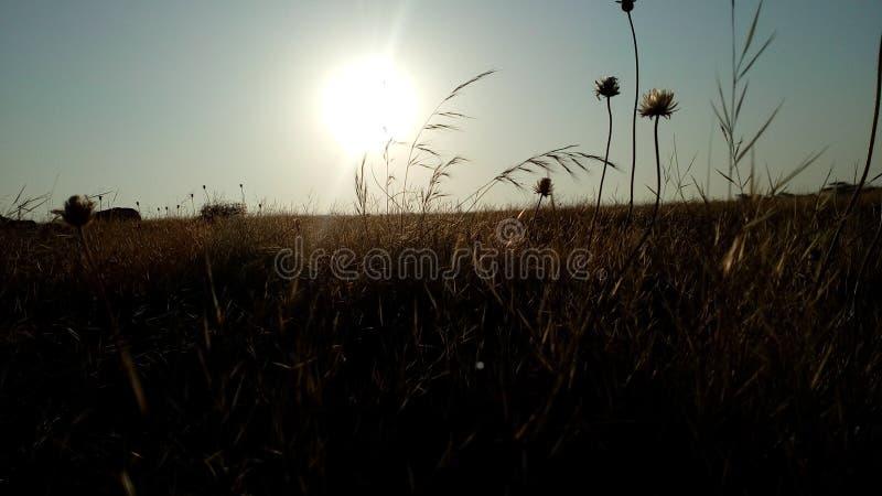 Imagem do nascer do sol imagem de stock