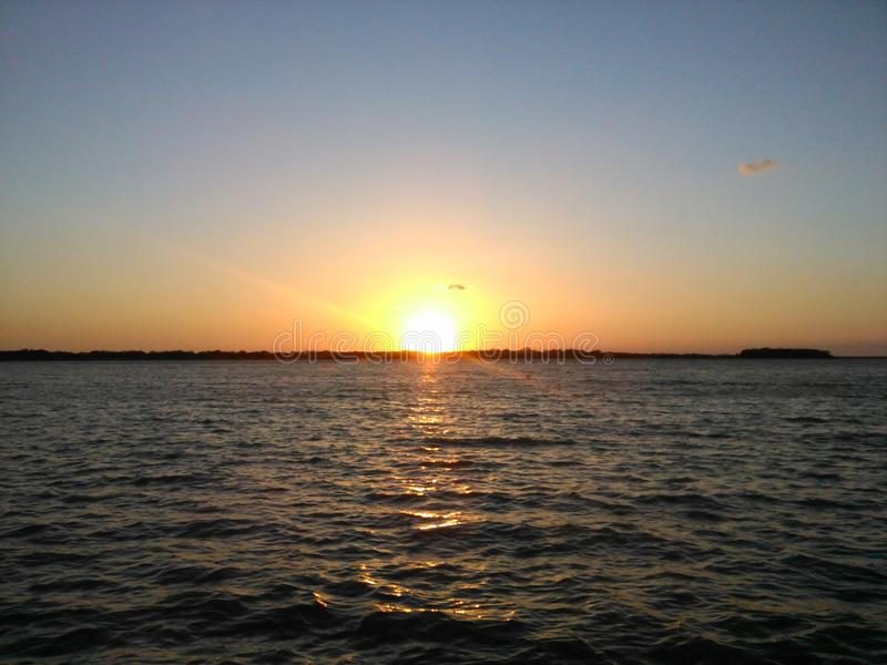 Imagem do por do sol do pisco de peito vermelho foto de stock