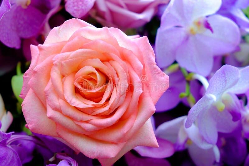 A imagem do ramalhete colorido da flor da rosa com fundo do borrão foto de stock