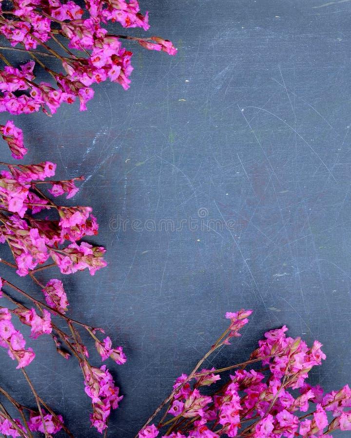 Imagem do tempo de mola de flores cor-de-rosa secadas em uma ardósia textured áspera, ou quadro-negro, fundo Copie o espaço fotografia de stock