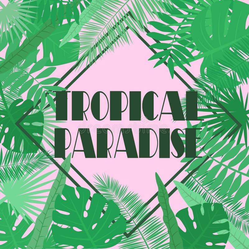 Imagem do vetor das folhas tropicais em um fundo cor-de-rosa com uma inscrição em um paraíso tropical do rombo Ilustração botânic ilustração stock