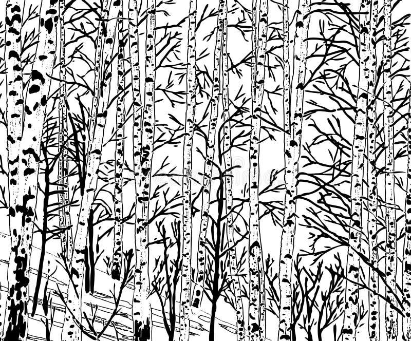 Imagem do vetor de um bosque do vidoeiro na estação fria ilustração stock