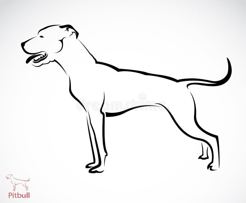 Imagem do vetor de um cão do pitbull ilustração royalty free