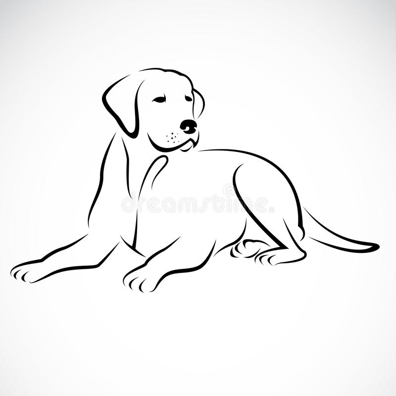 Imagem do vetor de um cão Labrador ilustração royalty free