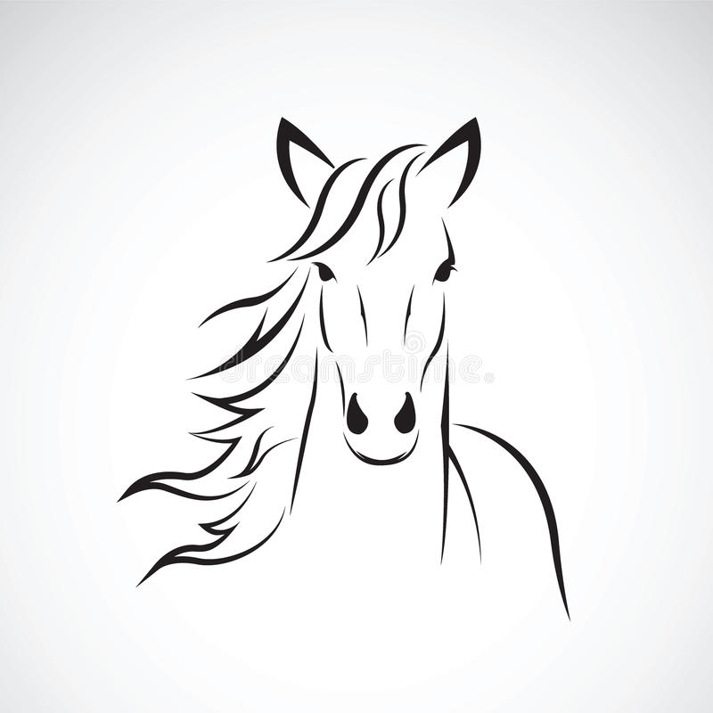 Imagem do vetor de um projeto da cabeça de cavalo no fundo branco, logotipo do cavalo Animais selvagens ilustração do vetor
