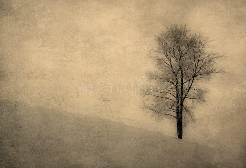 Imagem do vintage de uma árvore sobre o fundo do grunge ilustração do vetor