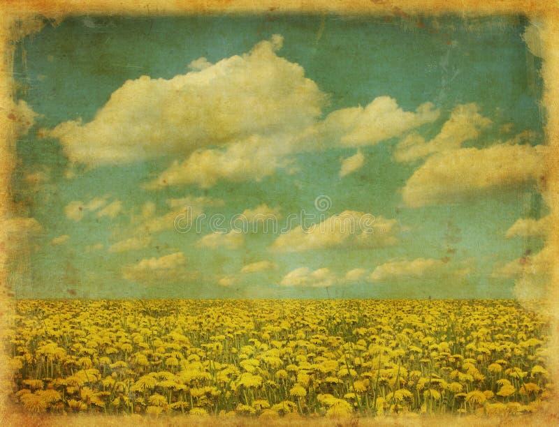 Imagem do vintage do campo do dente-de-leão ilustração stock