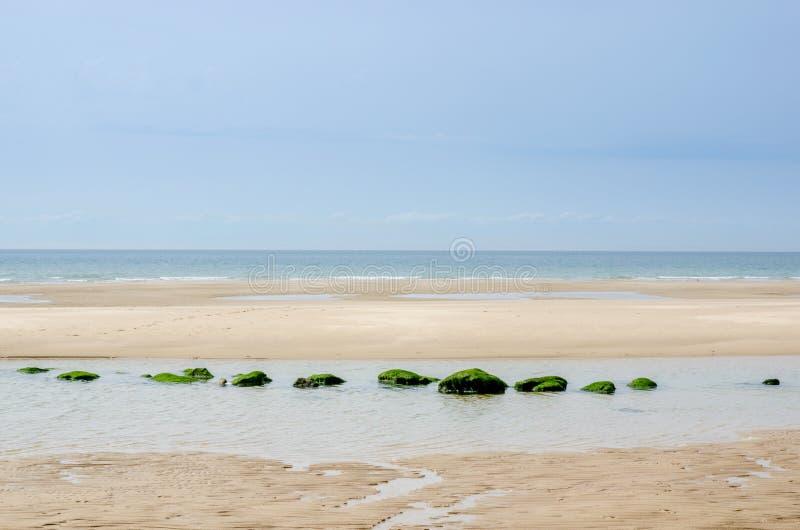 Imagem do zen de uma praia com rochas alinhadas fotografia de stock
