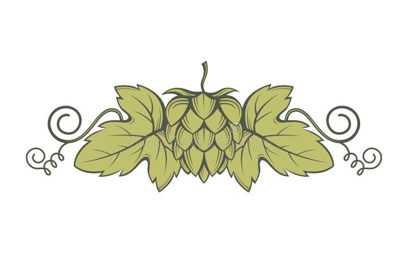 Imagem dos lúpulos ilustração stock