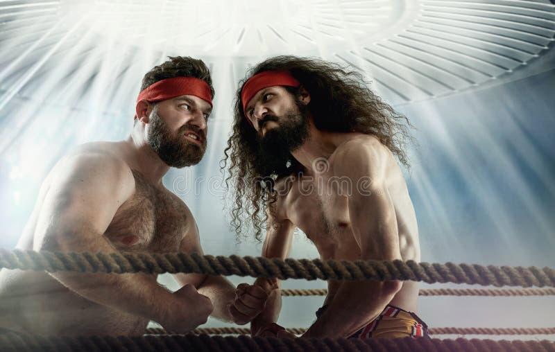 Imagem engraçada de dois oponentes do antagonista imagem de stock royalty free