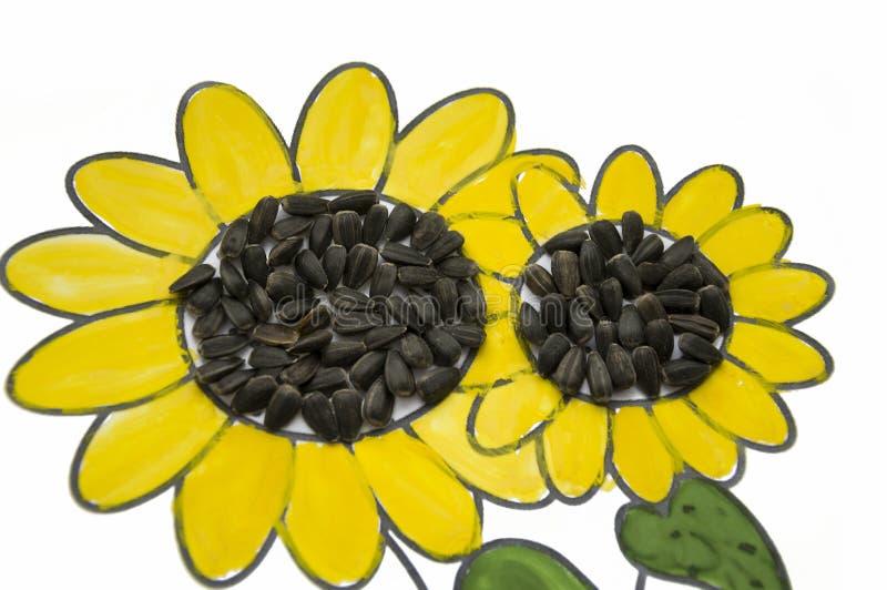Imagem feito à mão do girassol bonito Pintado com o guache amarelo e verde e as sementes pretas coladas Arte no fundo branco foto de stock
