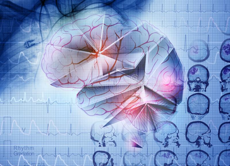 Imagem imaginária de um cérebro humano ilustração do vetor