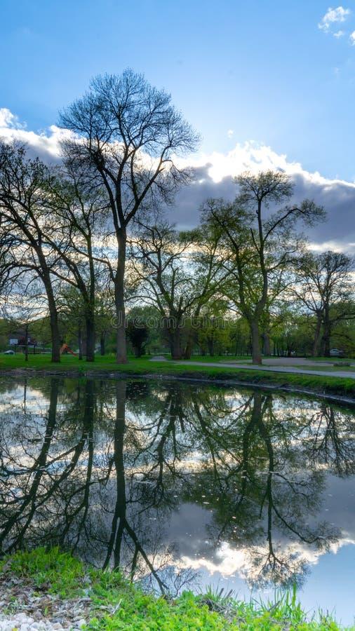 Imagem invertida na lagoa fotos de stock