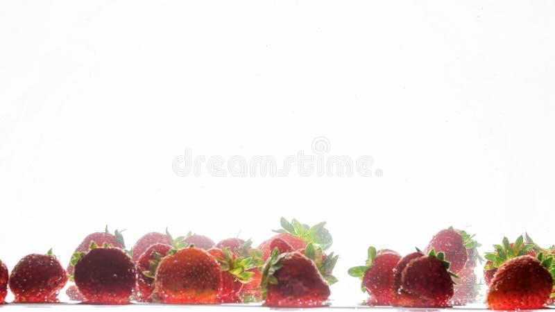 Imagem isolada close up dos lotes das framboesas maduras frescas que caem e que espirram na ?gua fotos de stock royalty free