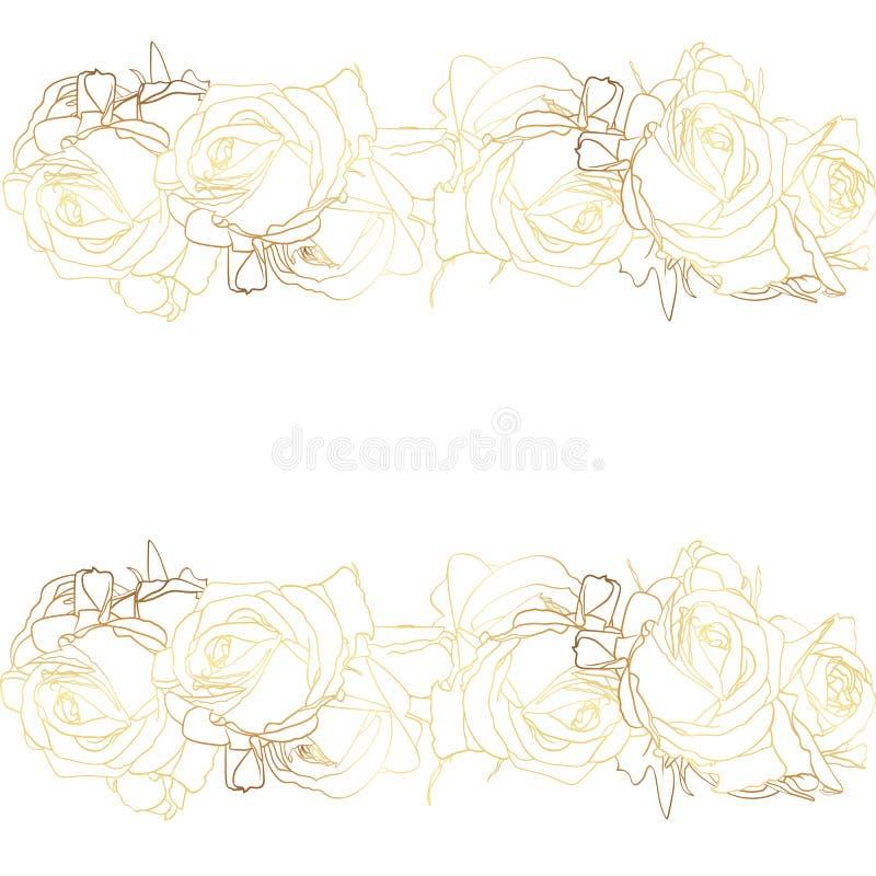 Imagem isolada de flores das rosas de um ouro Ilustração do vetor ilustração stock
