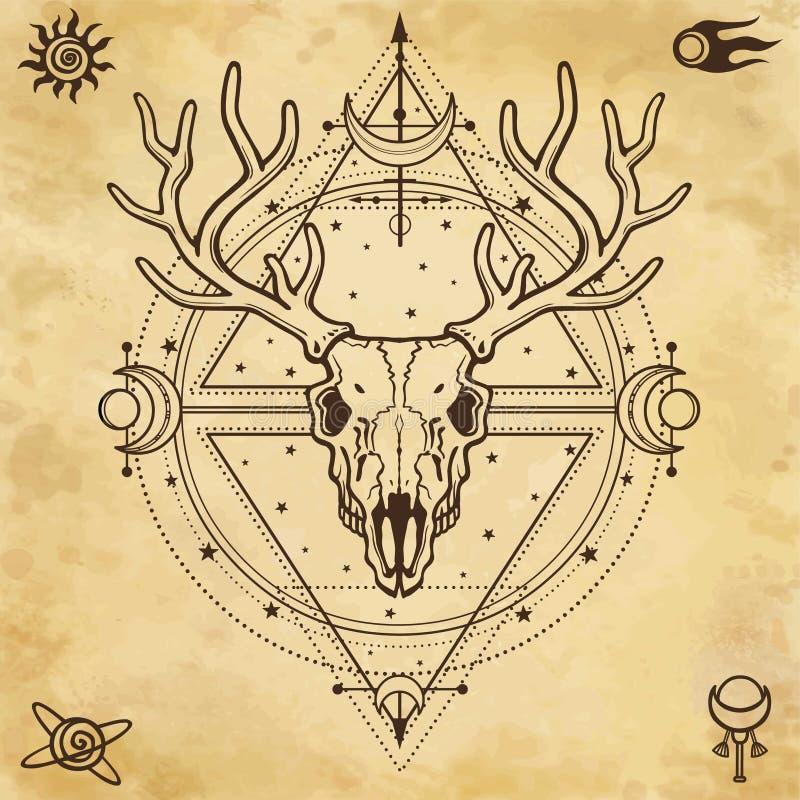 Imagem místico do crânio um cervo horned, geometria sagrado, símbolos da lua ilustração stock