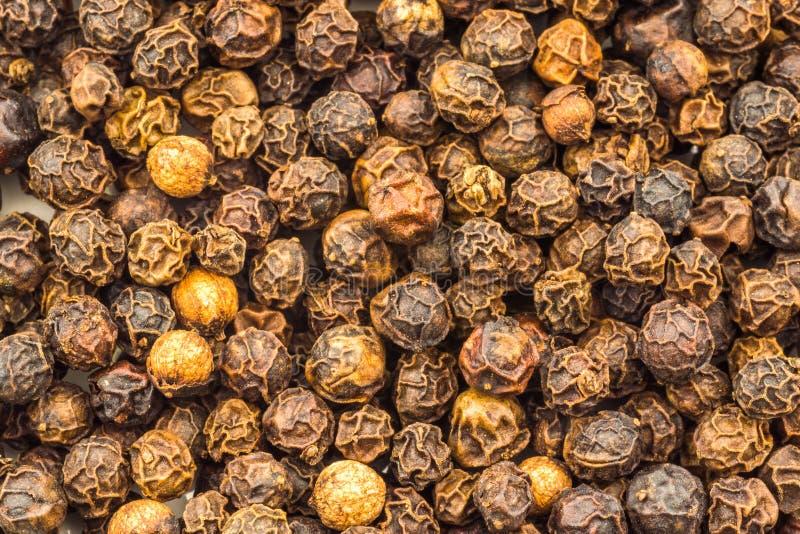 Imagem macro de grãos de pimenta pretos inteiros fotos de stock