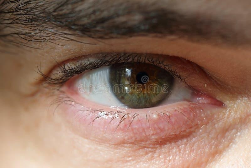 Imagem macro do olho humano imagens de stock royalty free