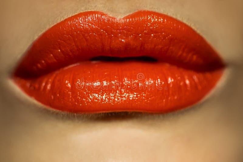Imagem macro dos bordos fêmeas com batom vermelho fotografia de stock royalty free