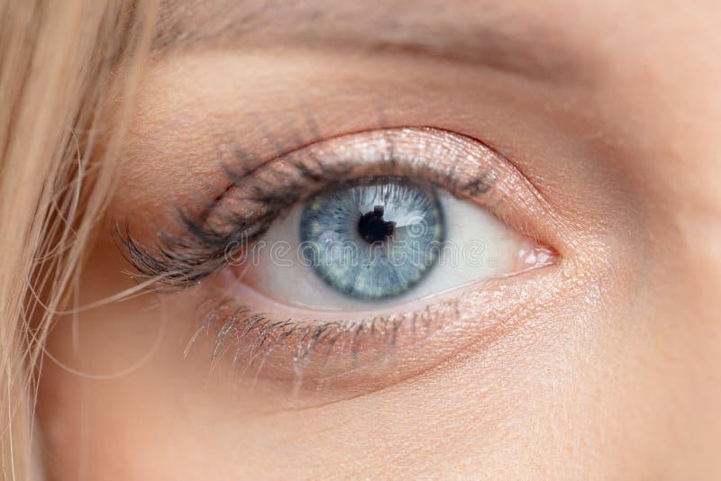 Imagem macro dos olhos azuis bonitos foto de stock