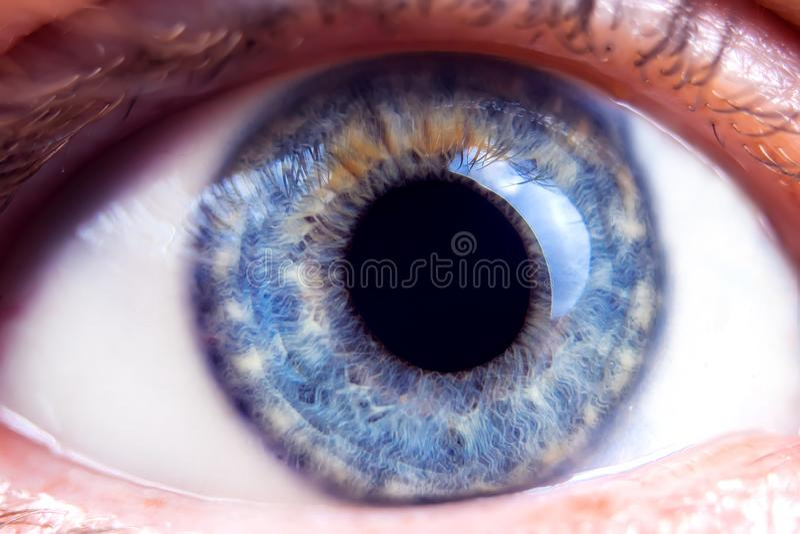Imagem macro dos olhos azuis humanos, detalhes do close-up fotografia de stock