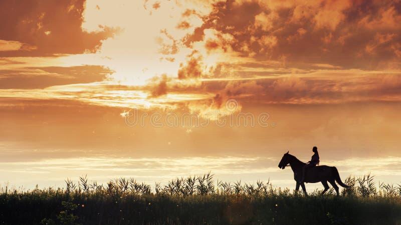 Imagem panorâmico da jovem mulher que monta um cavalo no prado imagens de stock royalty free