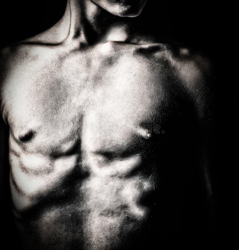 Imagem preto e branco de um torso do homem do nude fotografia de stock