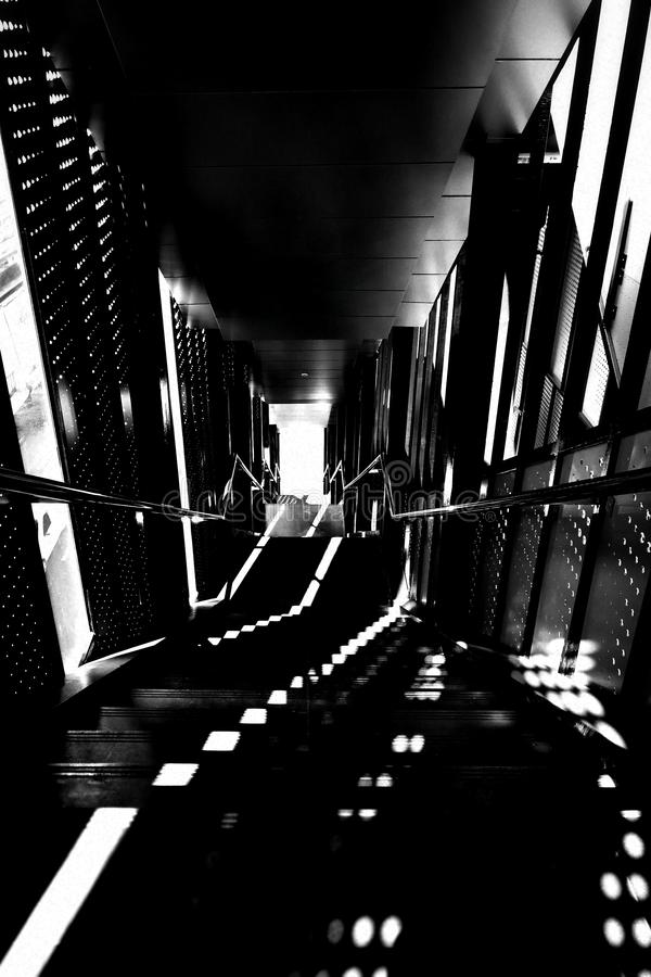 Imagem preto e branco de uma escadaria projetada moderna, de uma luz e de um fundo abstrato da sombra fotos de stock