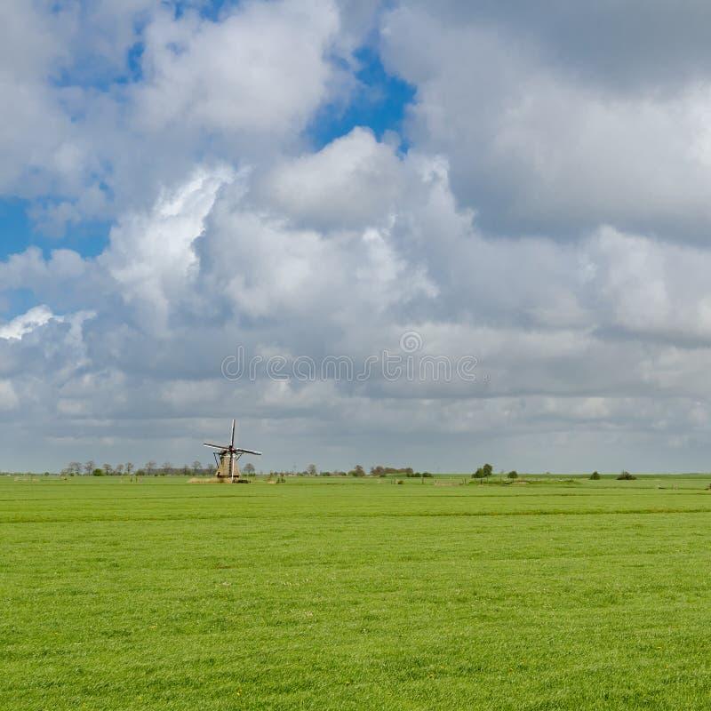 Imagem quadrada de uma paisagem holandesa típica fotografia de stock
