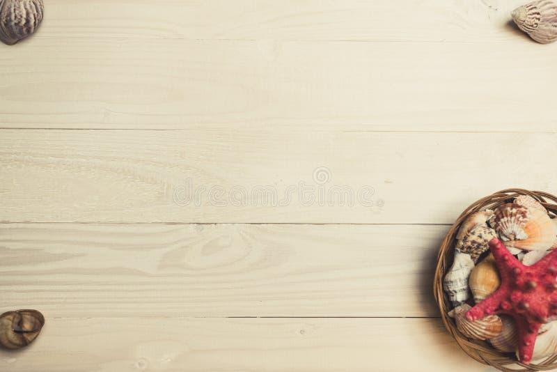 Imagem tonificada do ajuste das conchas do mar e da estrela do mar em de madeira branco fotografia de stock royalty free