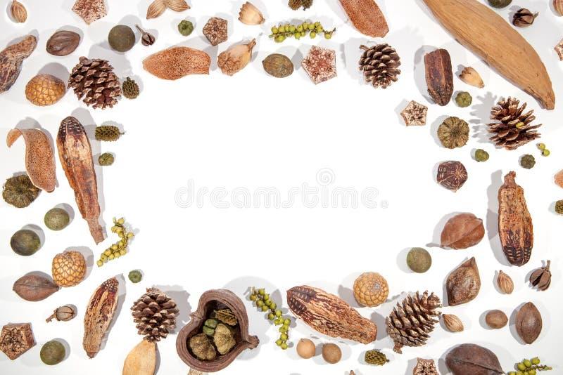 Imagem tradicional da beira do cartão de Natal Porcas f das bagas de Pinecone fotos de stock