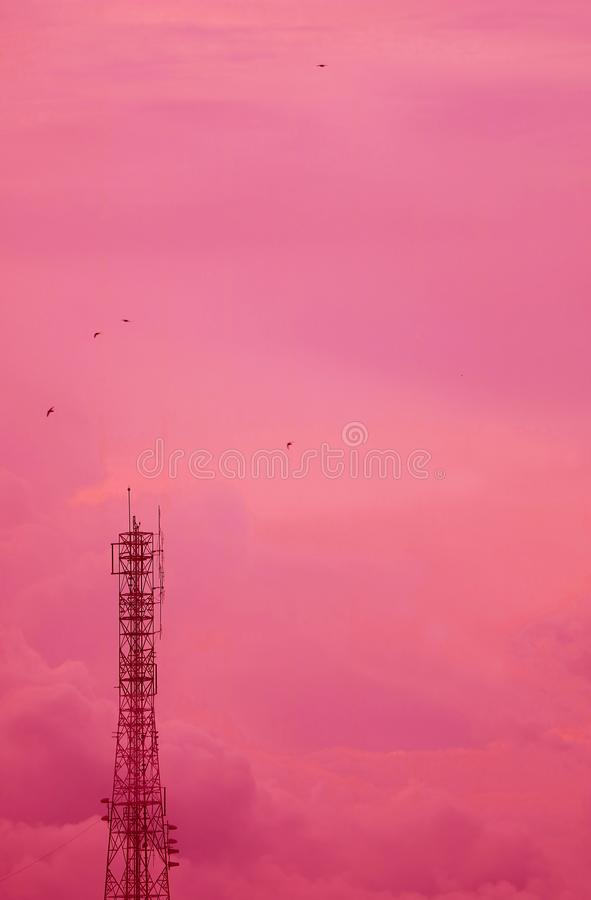 Imagem vertical da torre da telecomunicação contra o céu nebuloso cor-de-rosa sonhador fotos de stock royalty free