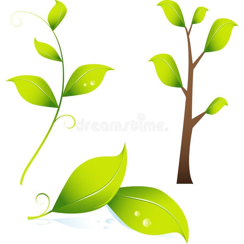 imagen 3D de la ramificación/de hojas