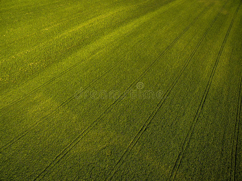 Imagen aérea de las tierras de labrantío desde arriba - de un verde enorme archivado imagenes de archivo