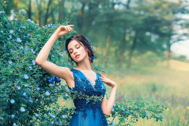 Imagen apacible de una ninfa en un vestido elegante elegante largo, muchacha como una flor asombrosa del aciano sue?os de la sire fotos de archivo