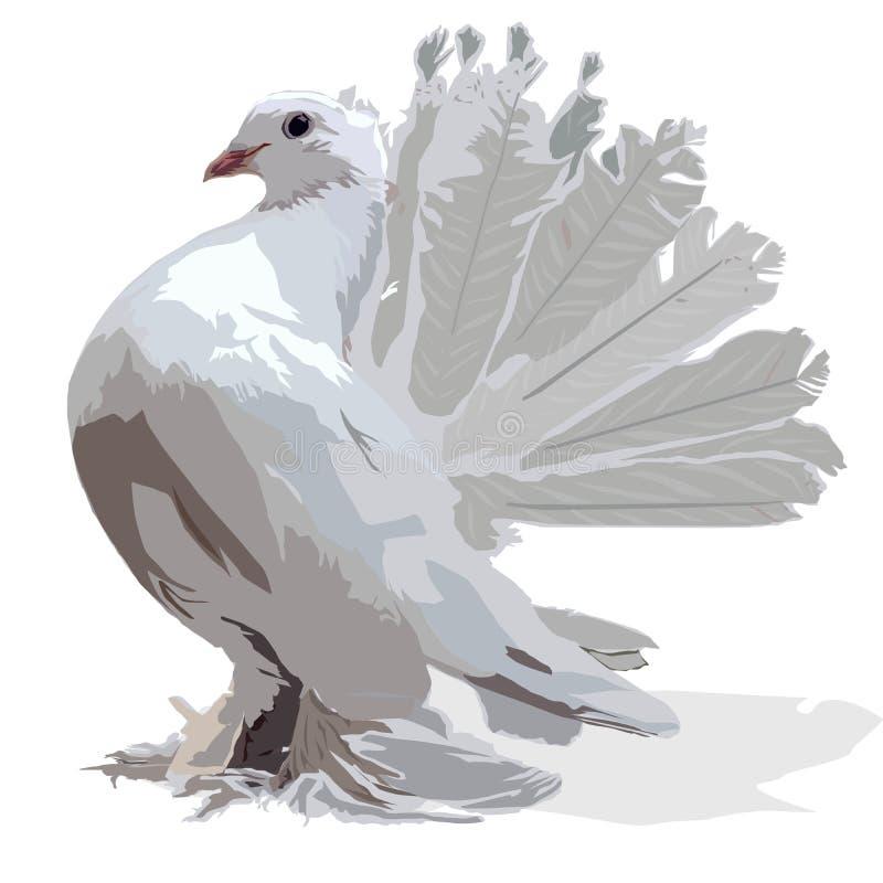 Imagen blanca decorativa del vector de la paloma stock de ilustración