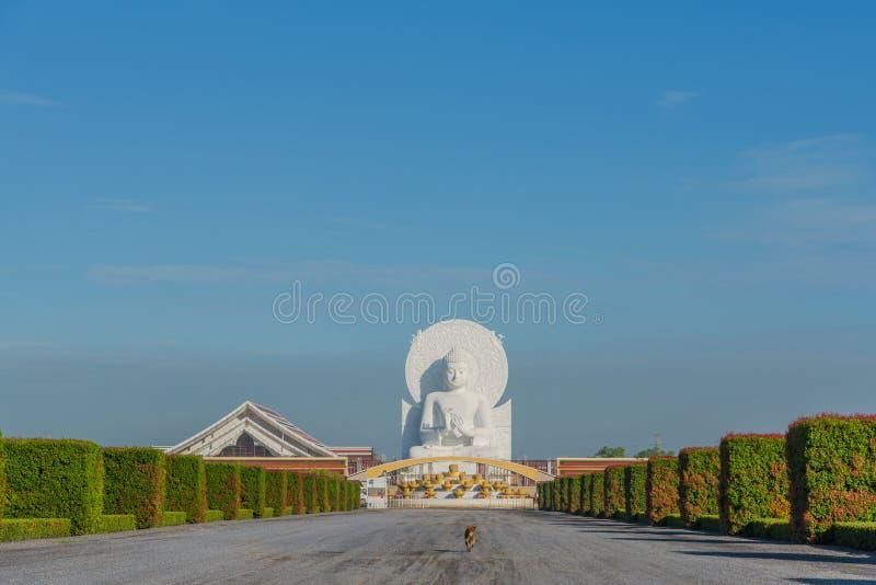 Imagen blanca grande de Buda en Saraburi, Tailandia imagen de archivo libre de regalías