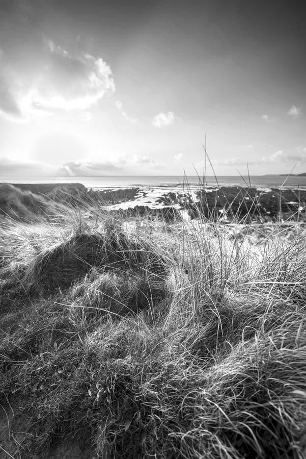 Imagen blanco y negro hermosa del paisaje del bea del oeste de agua dulce fotos de archivo libres de regalías
