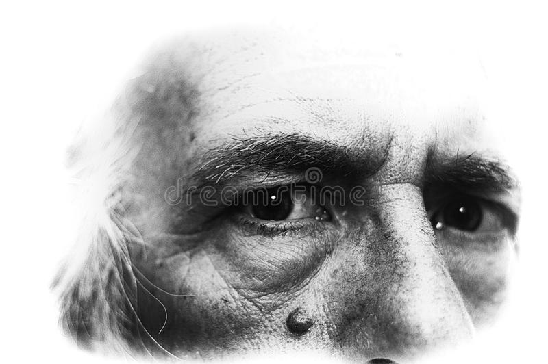 Imagen blanco y negro retroiluminada de los ojos del hombre imagenes de archivo
