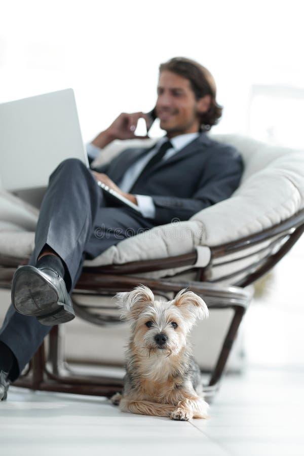 Imagen borrosa de un hombre de negocios que se sienta en una silla y su pequeño animal doméstico foto de archivo