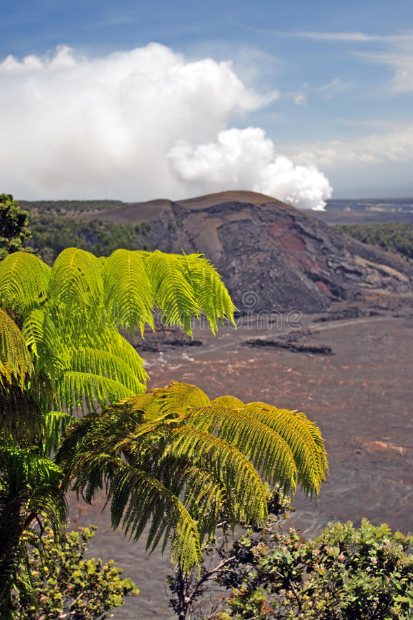 Imagen común de los volcanes parque nacional, los E.E.U.U. de Hawaii imagenes de archivo