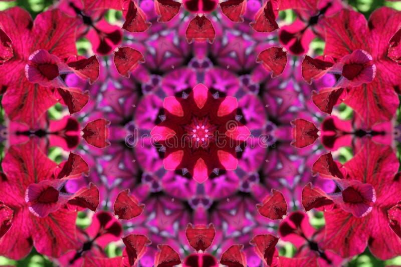 Imagen común del caleidoscopio de la petunia ilustración del vector