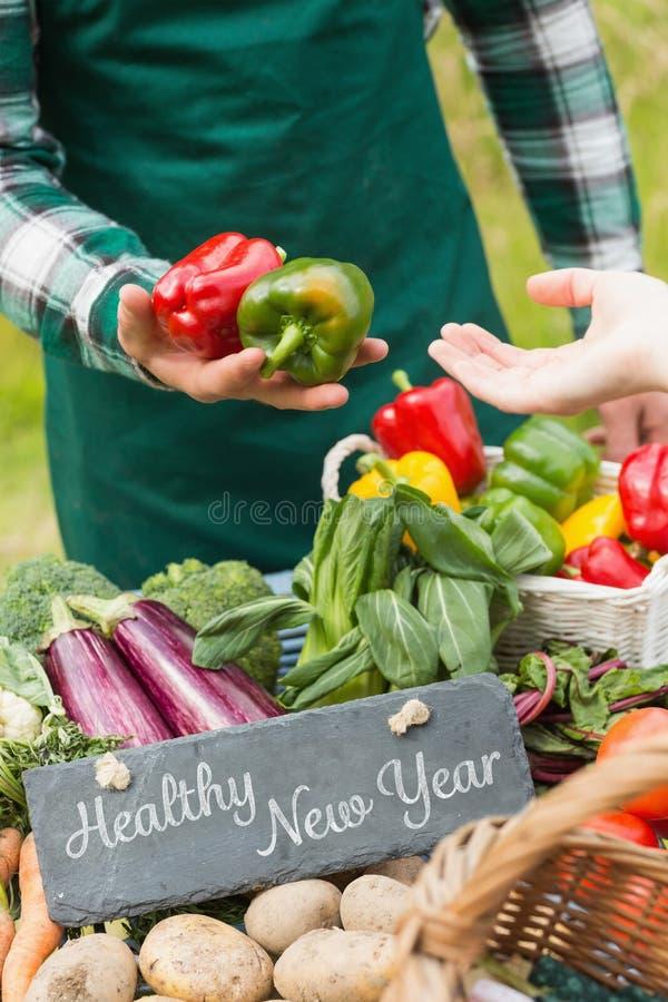 Imagen compuesta del Año Nuevo sano ilustración del vector