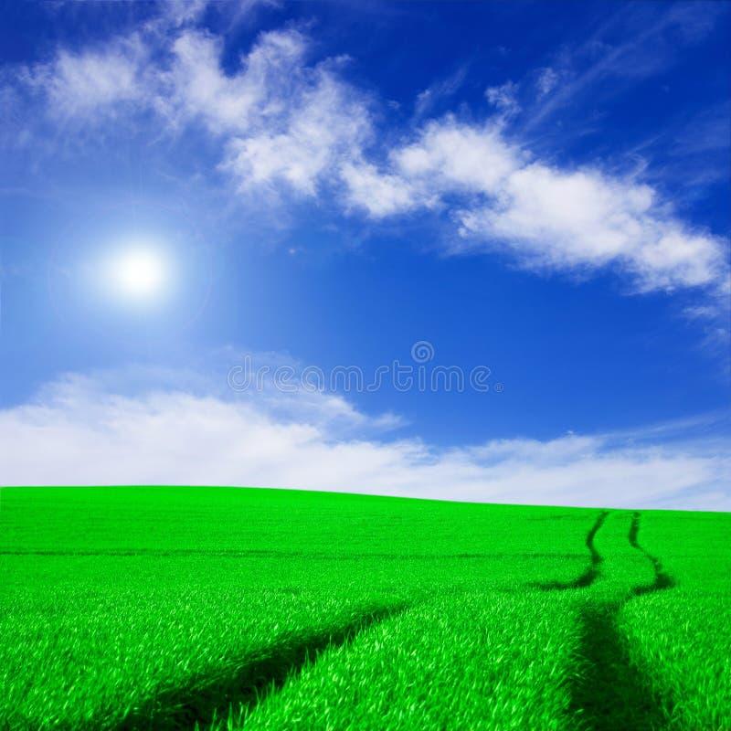 Imagen conceptual del campo verde y del cielo azul. fotos de archivo