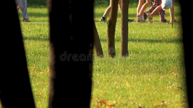 Imagen cosechada de la gente que camina en parque del verano foto de archivo libre de regalías