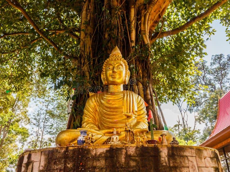 Imagen de Buda debajo del árbol de Bodhi foto de archivo libre de regalías