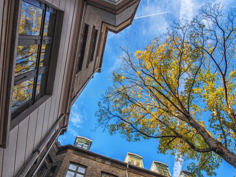 Imagen de edificios en las calles de Copenhague imagen de archivo libre de regalías